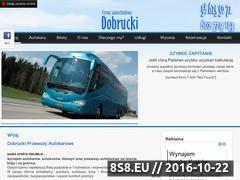 Miniaturka domeny www.dobrucki.com