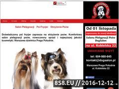 Miniaturka domeny www.dogsalon.pl