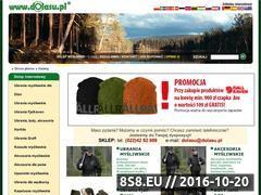 Miniaturka domeny www.dolasu.pl