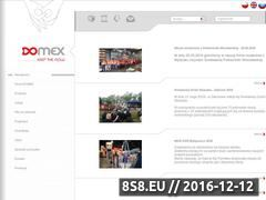 Miniaturka domeny www.domex.net.pl