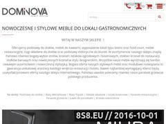 Miniaturka domeny www.dominova.com.pl