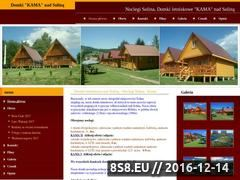 Miniaturka domeny domki-solina.com.pl