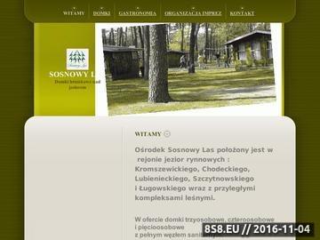 Zrzut strony Sosnowy las - organizacja imprez