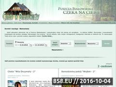 Miniaturka domeny www.domkiwbialowiezy.pl