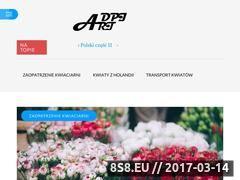 Miniaturka domeny www.dpi-art.pl