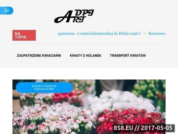 Zrzut strony Fotografia ślubna i reklamowa - dpi-ART Studio Fotografii i Druku