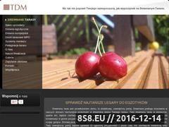 Miniaturka domeny www.drewniany-taras.pl