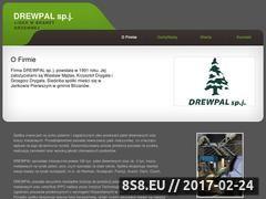 Miniaturka domeny www.drewpal.pl