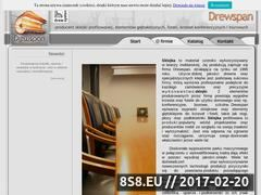 Miniaturka domeny www.drewspan.com.pl