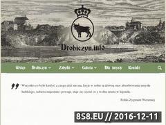 Miniaturka domeny www.drohiczyn.info