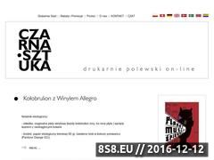 Miniaturka domeny www.drukarnia.biz