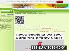 Miniaturka domeny www.drukservice.pl