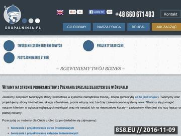 Zrzut strony Projektowanie stron internetowych Poznań