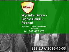 Miniaturka domeny drwal.24tm.pl