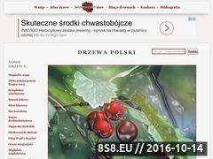 Miniaturka domeny www.drzewapolski.pl