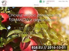 Miniaturka domeny drzewkaowocowe.com