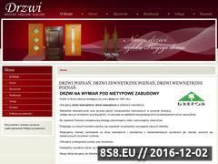 Miniaturka domeny drzwi-drefor.pl