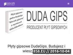 Miniaturka domeny dudagips.com.pl