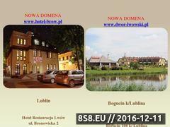 Miniaturka domeny www.dworlwowski.pl