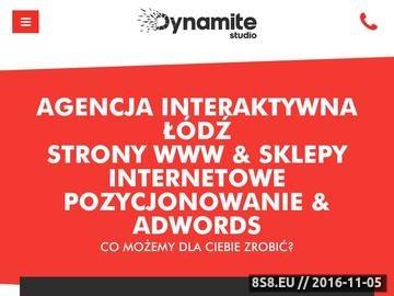 Zrzut strony Agencja Interaktywna Dynamite Studio