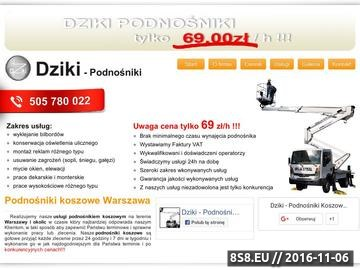 Zrzut strony Dziki - podnośniki koszowe Warszawa