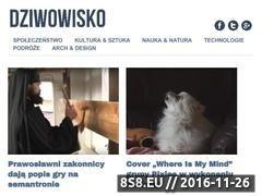 Miniaturka domeny dziwowisko.pl