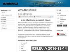 Miniaturka domeny dzwignica.pl