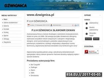 Zrzut strony P.U.H Dźwignica - konserwacja dźwignic