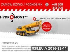 Miniaturka domeny www.e-dzwigi.pl