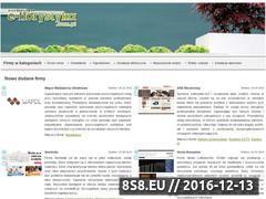 Miniaturka domeny e-florystyka.com.pl