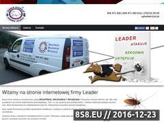 Miniaturka domeny e-leader.pl