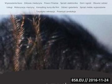 Zrzut strony Rzemiosło artystyczne - Galeria Artystyczna E-MUU