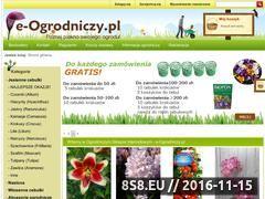Miniaturka domeny e-ogrodniczy.pl