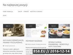 Miniaturka domeny www.e-position.pl