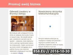 Miniaturka domeny www.e-promotion.com.pl