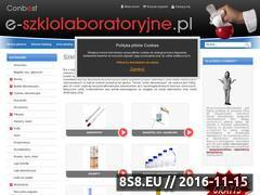 Miniaturka domeny www.e-szklolaboratoryjne.pl