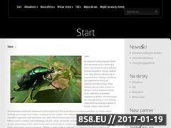 Miniaturka domeny e-webkatalog.pl