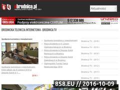 Miniaturka domeny www.ebrodnica.pl