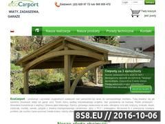 Miniaturka domeny ecocarport.pl