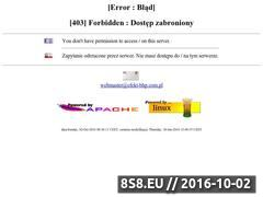Miniaturka domeny efekt-bhp.com.pl