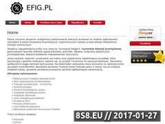 Miniaturka domeny www.efig.pl