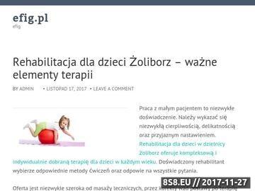 Zrzut strony Efig - Strony www Rzeszów, Strony internetowe Rzeszów, Systemy Alarmowe Rzeszów