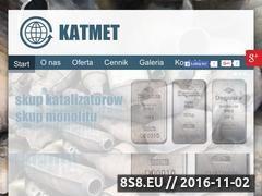 Miniaturka domeny www.ekatalizatory.pl