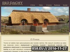 Miniaturka domeny www.eko-dachy.pl