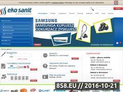 Miniaturka domeny www.eko-sanit.pl