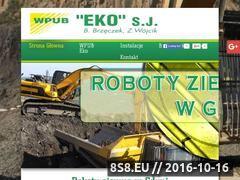 Miniaturka domeny eko-sieci.pl