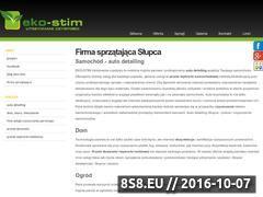 Miniaturka domeny eko-stim.com