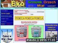 Miniaturka domeny www.ekogroszek2u.pl