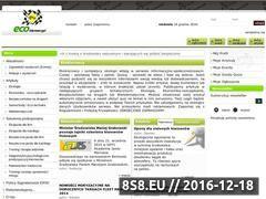 Miniaturka domeny www.ekokierowcy.pl