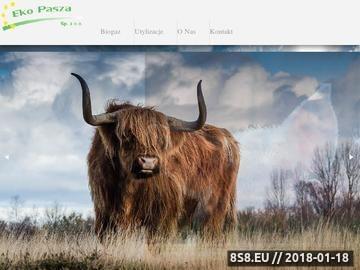 Zrzut strony EKO-PASZA kontrola jakości pasz